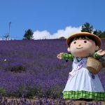 Municipal Lavender Garden
