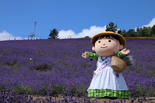 悠悠北海道
