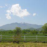 Yachiyo Public Rearing Farm