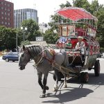 Sapporo Sightseeing Covered Wagon