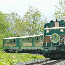 "Kushiro Mashland Train""Norokko-gou"""