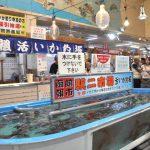 Fishing for fresh squid (Hakodate Morning Market)