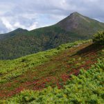 天盐岳道立自然公园