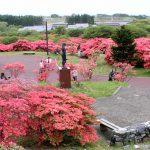 惠山映山红公园