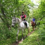 Nikappu Horoshiri Horse Club