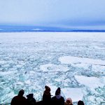 Abashiri Drift Ice Sightseeing & Icebreaker Ship