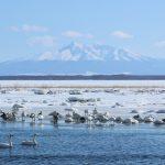 Lake Tofutsuko
