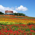 "Flower Garden ""Hana-Tento"""