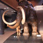 苫小牧市美术博物馆