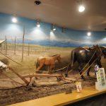 馬の資料館