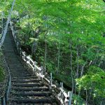 Hokkaido Tsubetsu Forest of the 21st Century