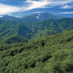 Kariba-Motta Prefectural Natural Park