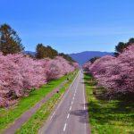 The Nijukken Road