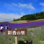 Saika no Sato Lavender Farm